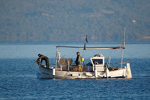 Oferta de trabajo pesca sostenible