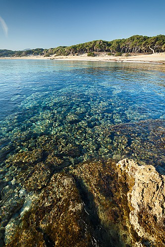 Marilles Fundation - Españoles en la mar - Informe Mar Balear