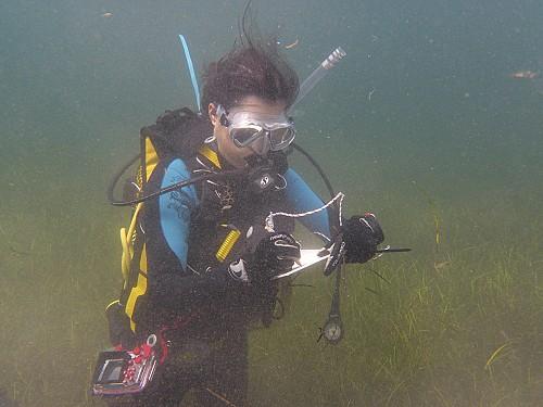 Marilles Fundation - El OBSAM evalúa las presiones y las amenazas del mar de Menorca