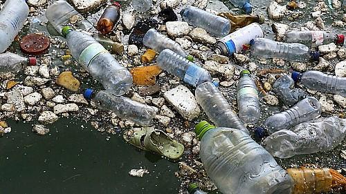 Marilles Fundation - Cinc entitats de Menorca s'uneixen per coordinar accions que redueixin els plàstics