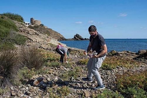 Marilles Fundation - Los equipos inscritos en el programa de adopción de playas del Gob empiezan a actuar
