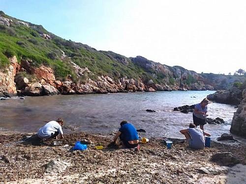 Marilles Fundation - 1.500 volunteers to protect the Minorca Coastline