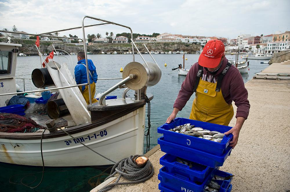 Peix fresc, local, de temporada i sostenible