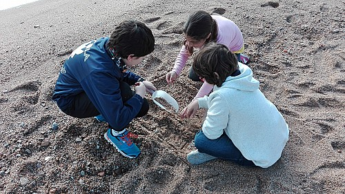 Schoolchildren will gather information on the presence of microplastics
