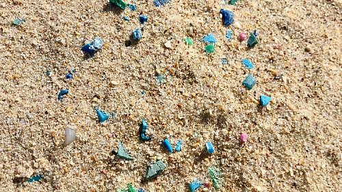 Marilles Fundation - Escolares informarán de la presencia de microplásticos en las playas