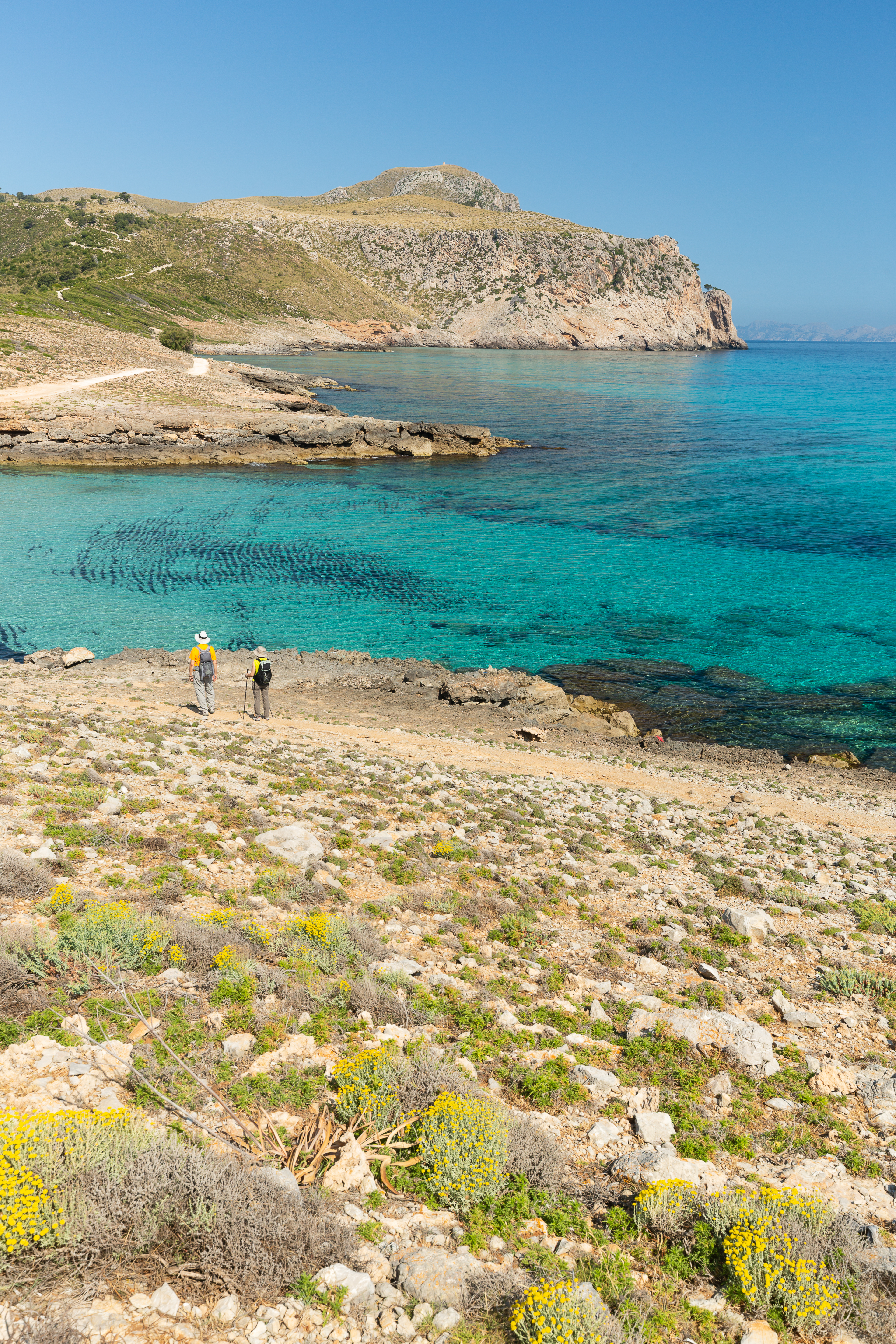 10 EUR of benefit for every euro invested in the MPA of Llevant (Mallorca)