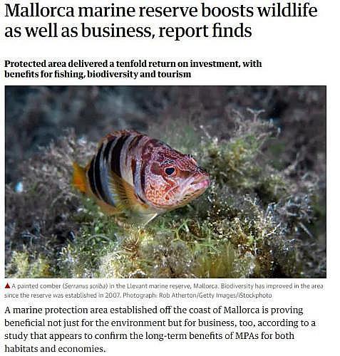 Marilles Fundation - 'The Guardian' se hace eco del impulso económico de la reserva marina de Mallorca