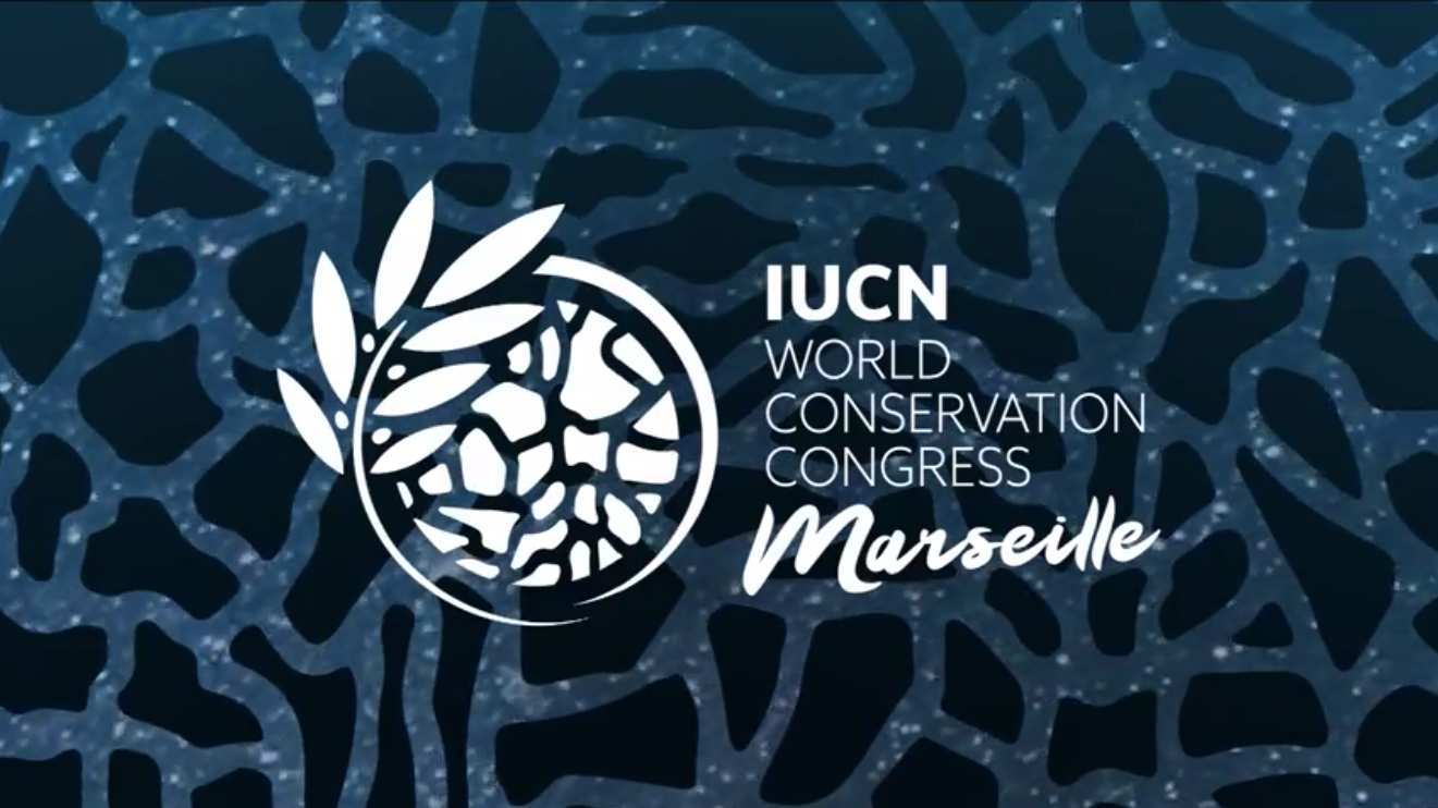 Marilles at the World Conservation Congress